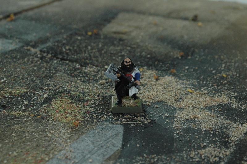 Le Royaume de L'Isle en figurines 23-vit10