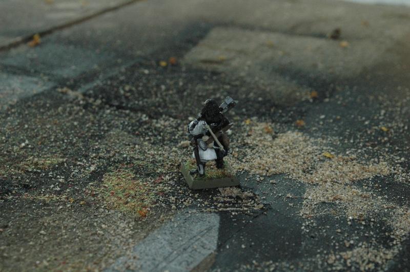 Le Royaume de L'Isle en figurines 25-vit10