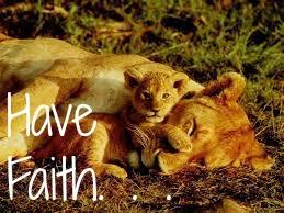 Destiny's Faith- Lion & wolf RPG. Lion_c14