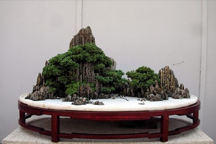 suiseki bonsai Qqac2071