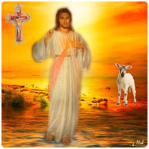 Naissance de Jésus notre Seigneur, vision de Maria Valtorta Agneau10