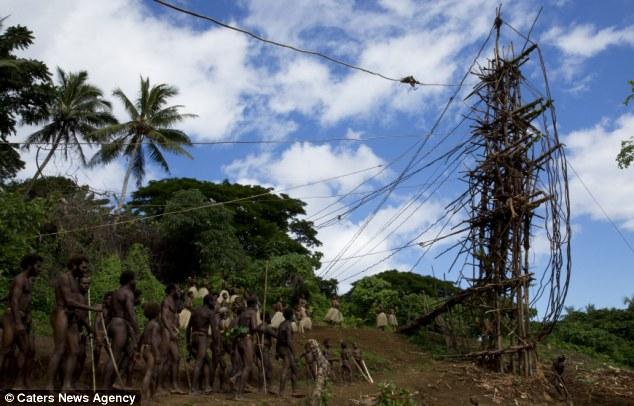 l'incroyable rituel de passage dans cette tribu du Pacifique 1275