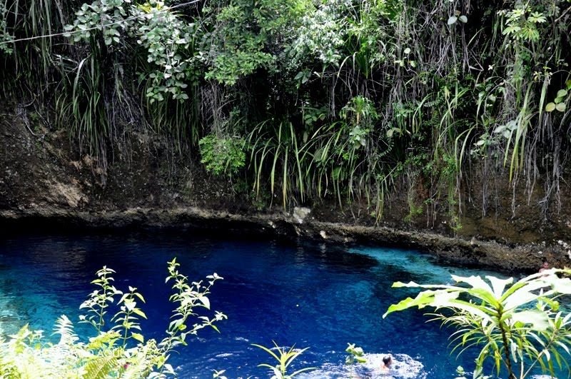 The Hinatuan River, une rivière enchantée aux Philippines 270
