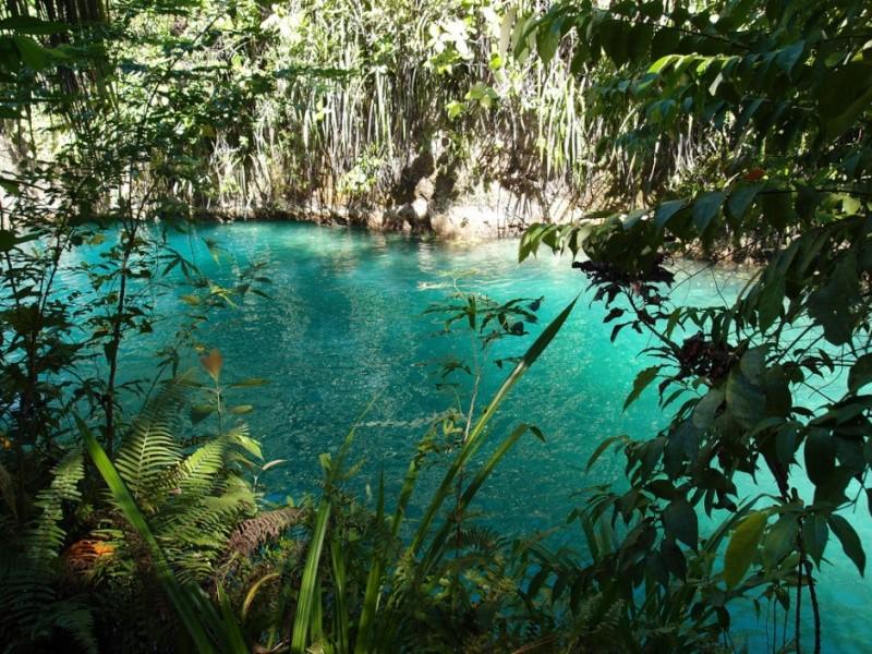 The Hinatuan River, une rivière enchantée aux Philippines 349