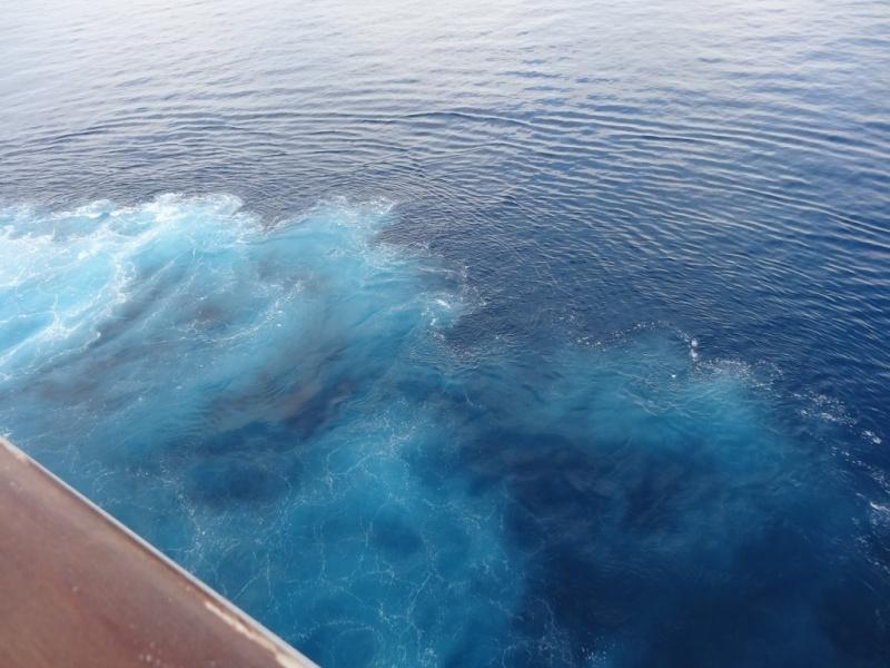 CR Néoriviera Soleil de Méditerranée 9 au 20 juillet 2014 Dsc01212