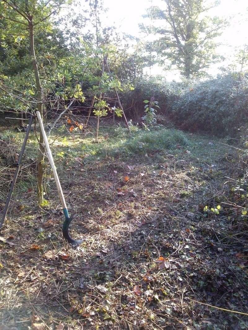Terrain d'exercice d'activités en pleine Nature Cam00214