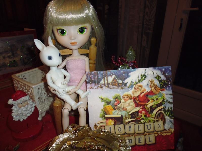 Mes deux cadeaux de Noël (PULLIP et HUJOO) P1020410