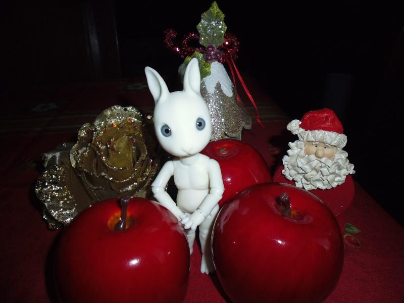 Mes deux cadeaux de Noël (PULLIP et HUJOO) P1020414