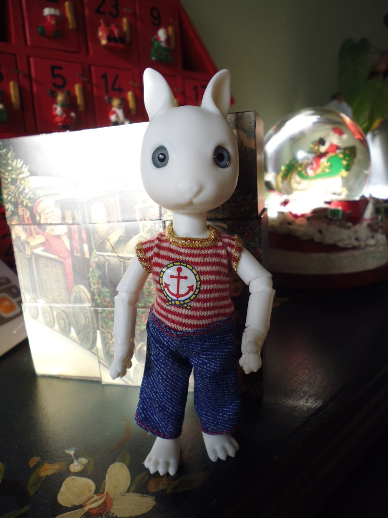Mes deux cadeaux de Noël (PULLIP et HUJOO) P1020415