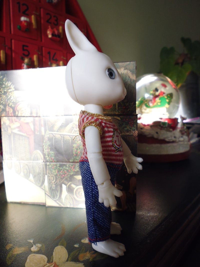 Mes deux cadeaux de Noël (PULLIP et HUJOO) P1020416