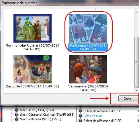 [Débutant] Copier dans la boit@look ou le CAS un sim déjà installé en jeu Tuto611
