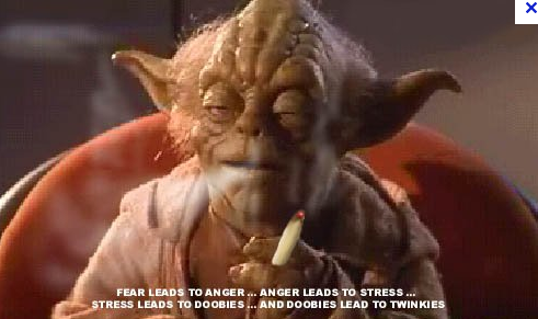 A propos des futurs échanges !!! Yoda10