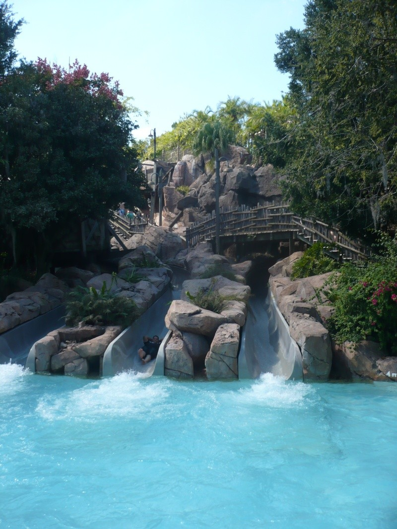 [18-31 octobre 2014] Voyage de noces à Walt Disney World et à Universal - Page 4 P1080913