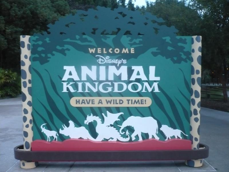 [18-31 octobre 2014] Voyage de noces à Walt Disney World et à Universal - Page 5 P1080939