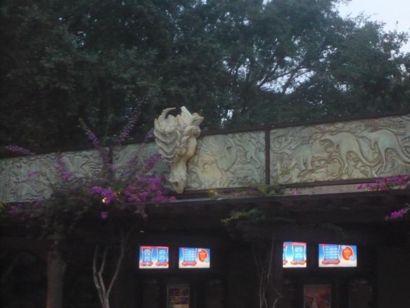 [18-31 octobre 2014] Voyage de noces à Walt Disney World et à Universal - Page 5 P1080941