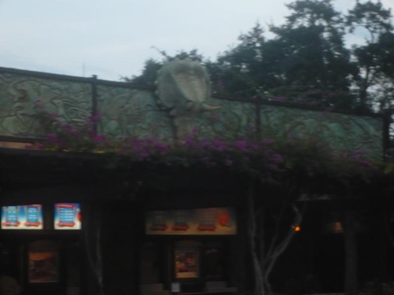[18-31 octobre 2014] Voyage de noces à Walt Disney World et à Universal - Page 5 P1080942