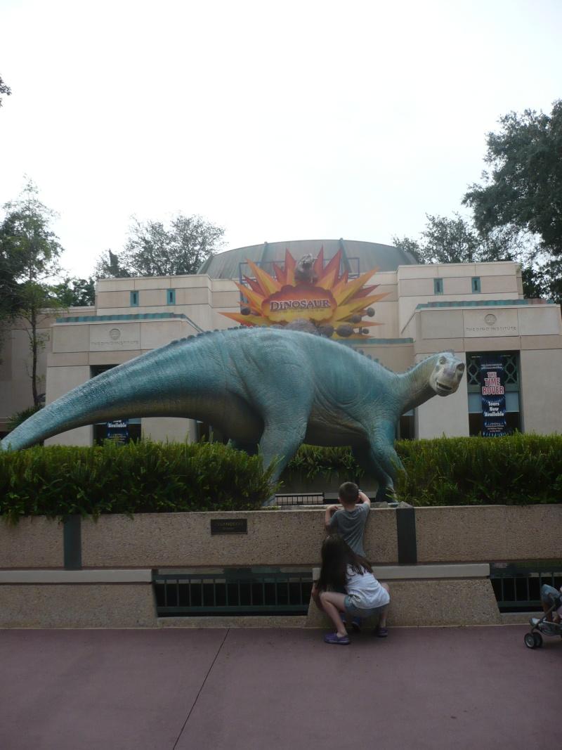 [18-31 octobre 2014] Voyage de noces à Walt Disney World et à Universal - Page 5 P1080960