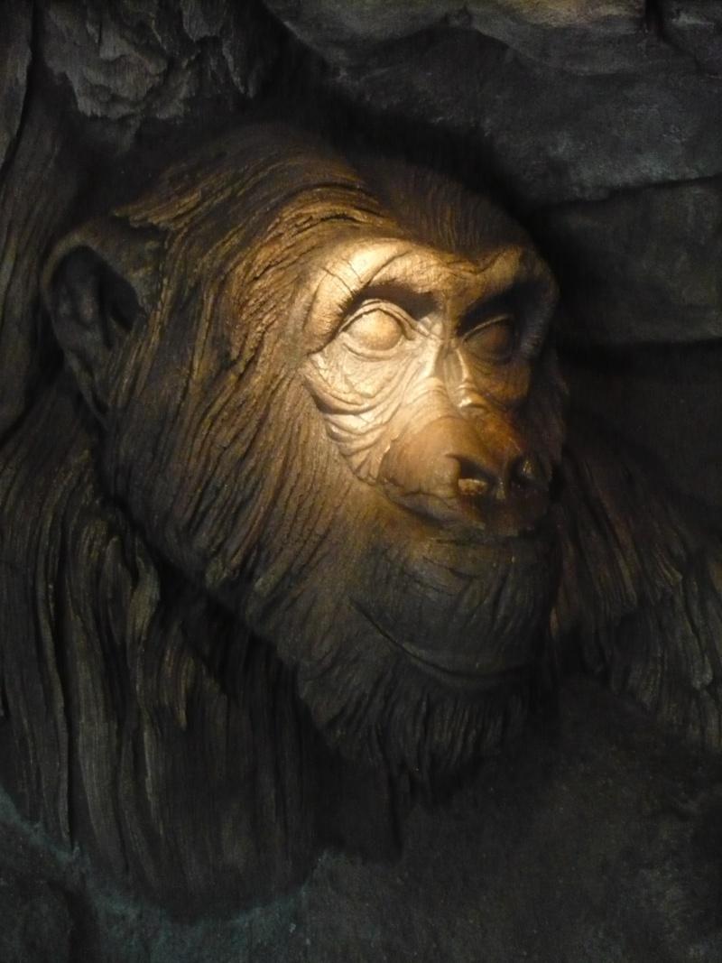 [18-31 octobre 2014] Voyage de noces à Walt Disney World et à Universal - Page 5 P1090017
