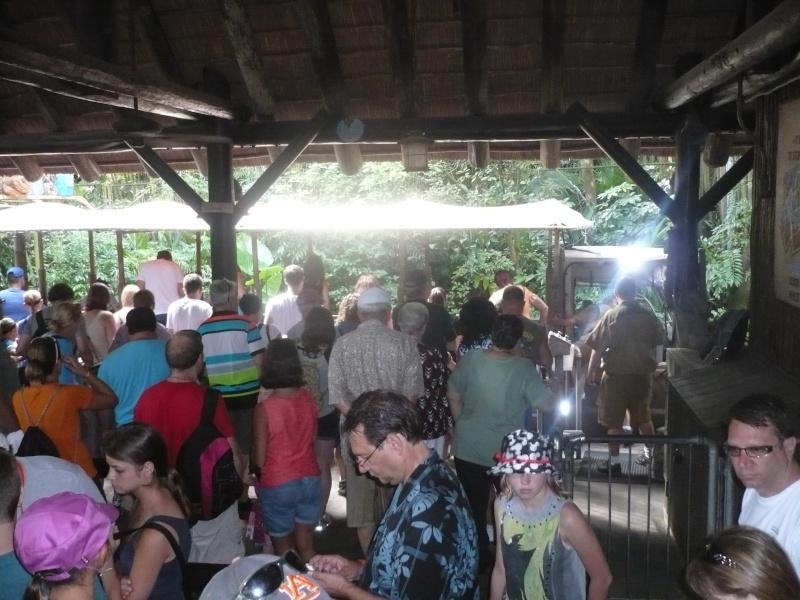 [18-31 octobre 2014] Voyage de noces à Walt Disney World et à Universal - Page 5 P1090020