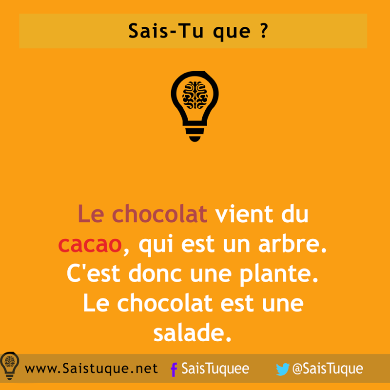 Vive les cabanes en chocolat ! - Page 3 10443610