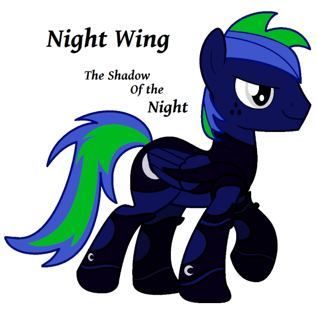 Personnages Night Wing Nw_arm10