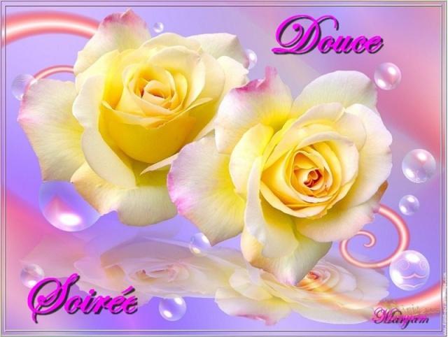 LES BONSOIRS DU SOIR  - Page 23 Douce_14