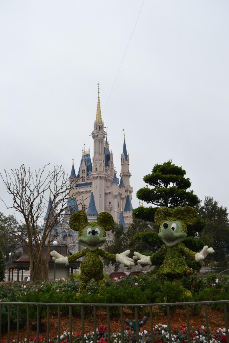 Notre séjour chez Mickey en janvier 2014 - Walt Disney World - Page 11 Dsc_0729