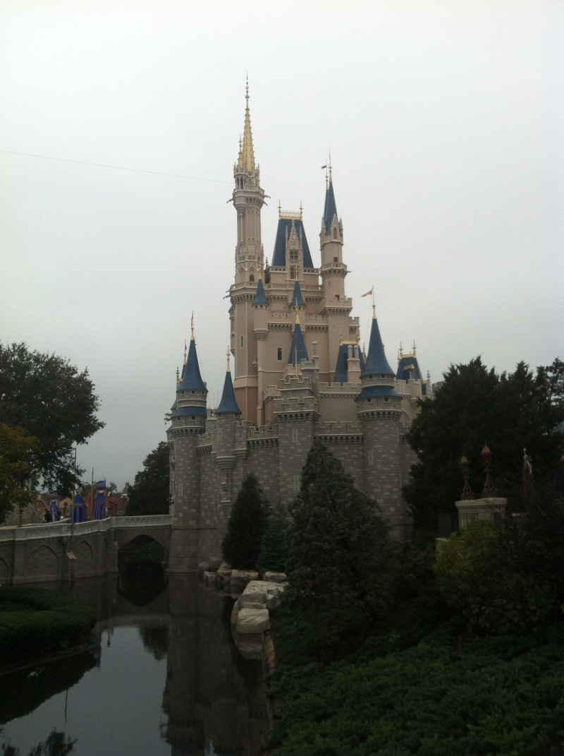 Notre séjour chez Mickey en janvier 2014 - Walt Disney World - Page 11 Img_0526