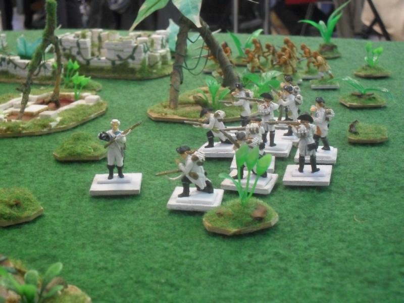Bataille aux Indes Sdc12216