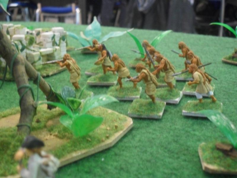 Bataille aux Indes Sdc12217