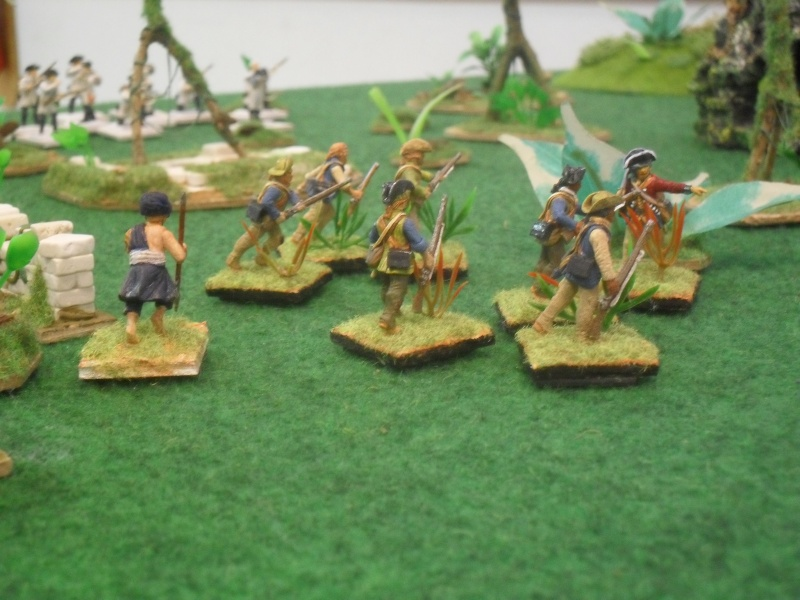 Bataille aux Indes Sdc12219