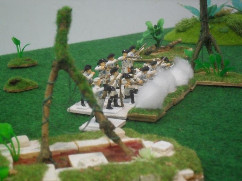 Bataille aux Indes Sdc12220