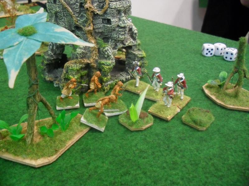 Bataille aux Indes Sdc12221