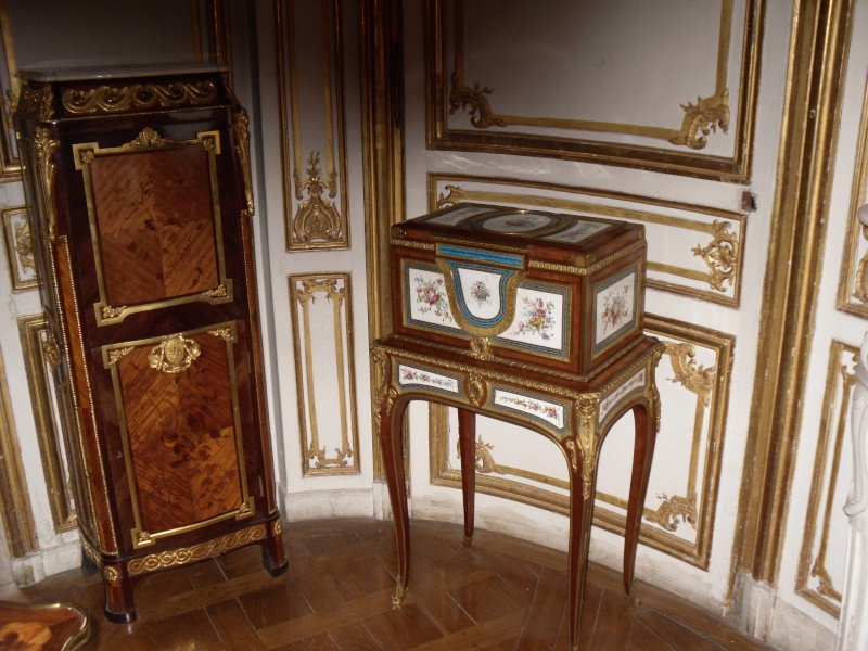 Les appartements de Madame du Barry Persae47