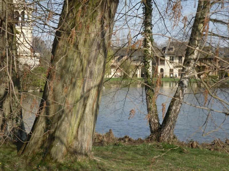 Les jardins du Petit Trianon Versai20