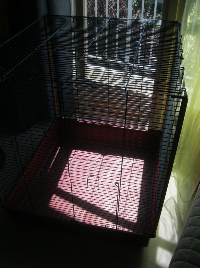 Vend cage - Furet XL Ferplast Img_5811