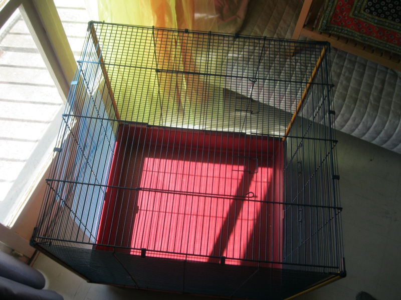 Vend cage - Furet XL Ferplast Img_5813
