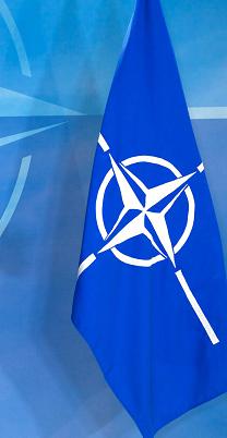 OTAN - Dépenses militaires des pays membres de 1990 à 2013 - La france en baisse continue Drapea10