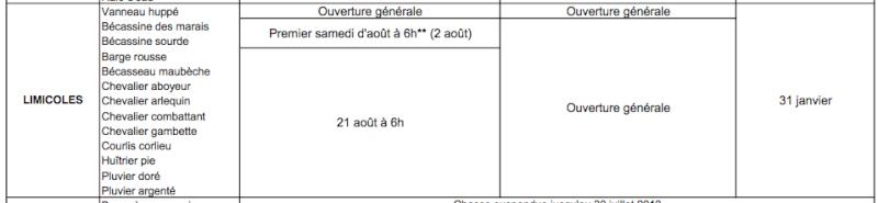 Ouverture Anticipée Bécassine Captur53