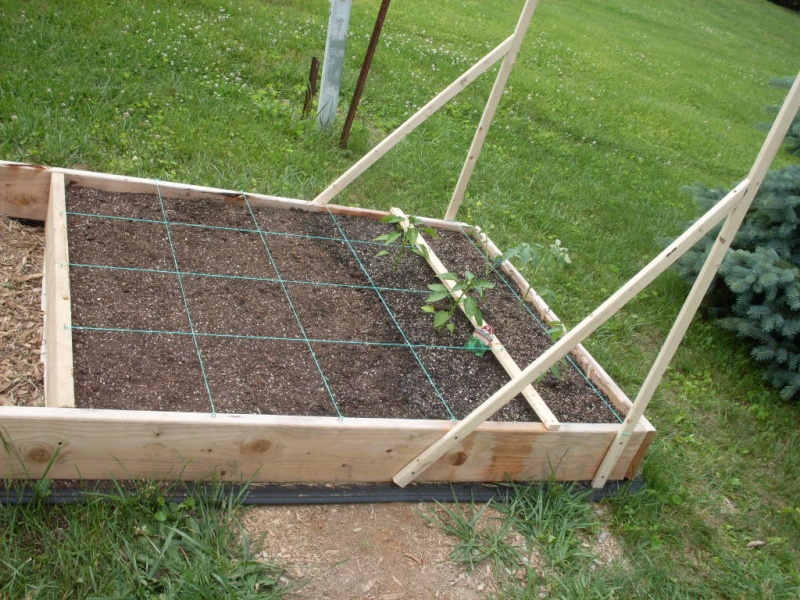 (Phase 1) Construction of 10' x 4' Bed Plante10