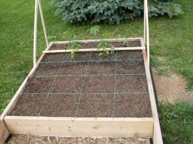 (Phase 1) Construction of 10' x 4' Bed Plante11