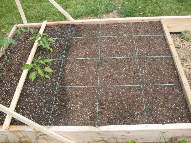 (Phase 1) Construction of 10' x 4' Bed Plante12