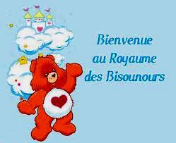Bonjour à tous Bisoun10