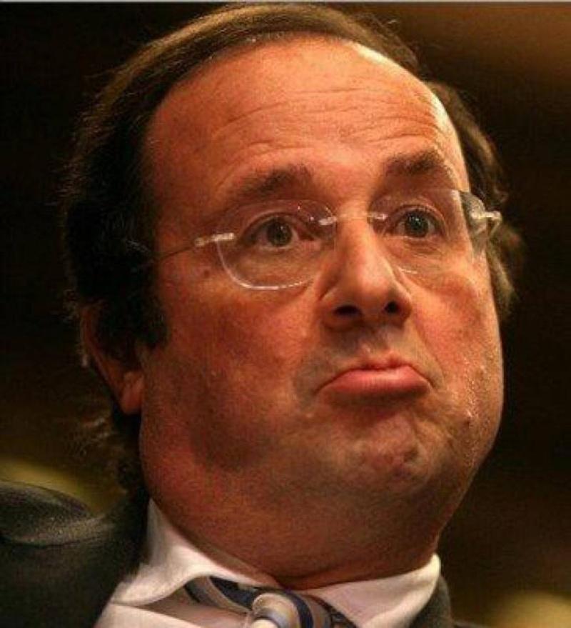 Hollande chute à 13% - Page 5 18999410