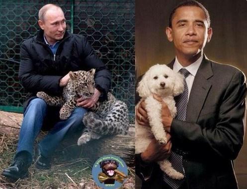 Путин, Русија пред и со него Select10