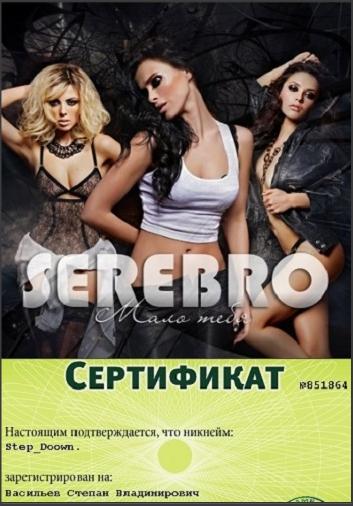 Ремиксы песен группы Серебро Snap_221