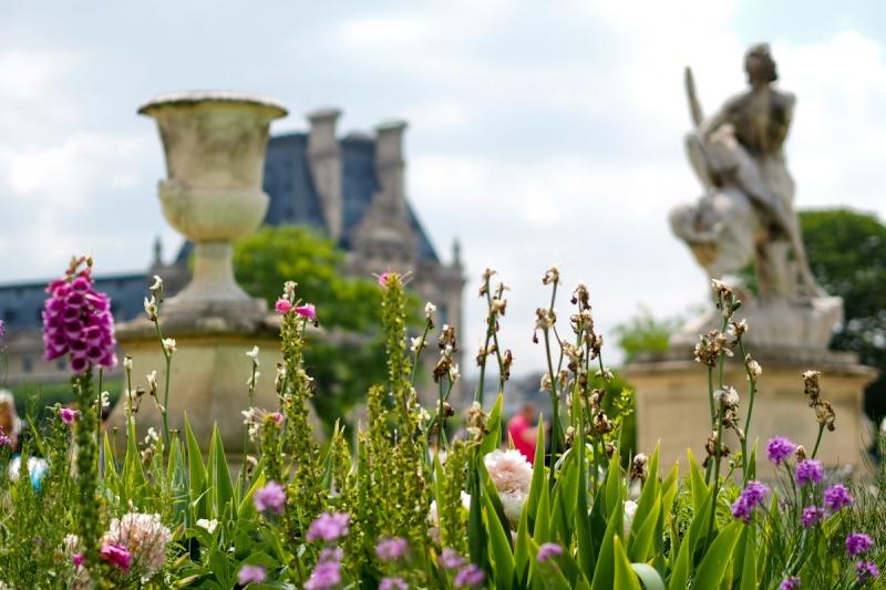 Tuileries en fleurs P5310010