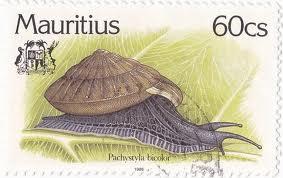 Des escargots et des timbres Images18