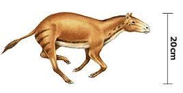 Les chevaux prehistoriques Sans-t10
