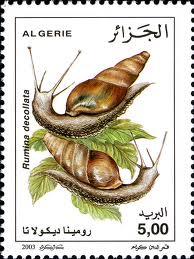 Des escargots et des timbres Sans-t12